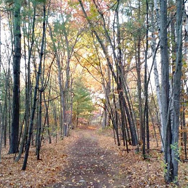 Roberts Field Walking Trails